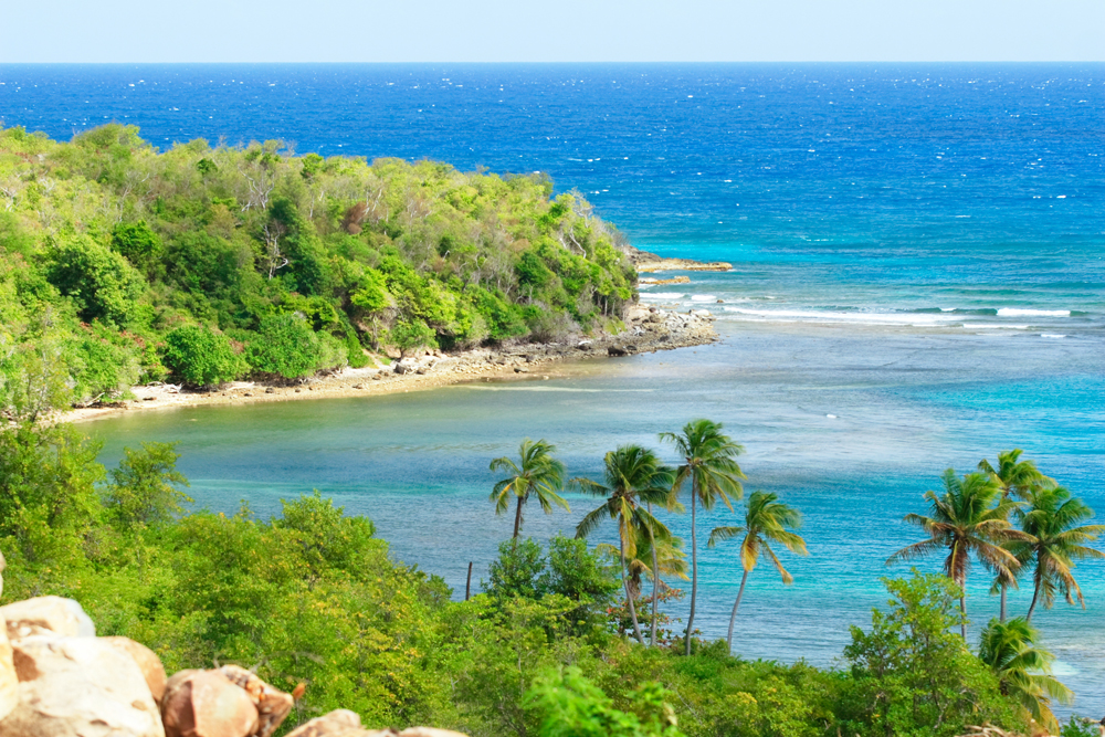 Caribbean Land For Sale